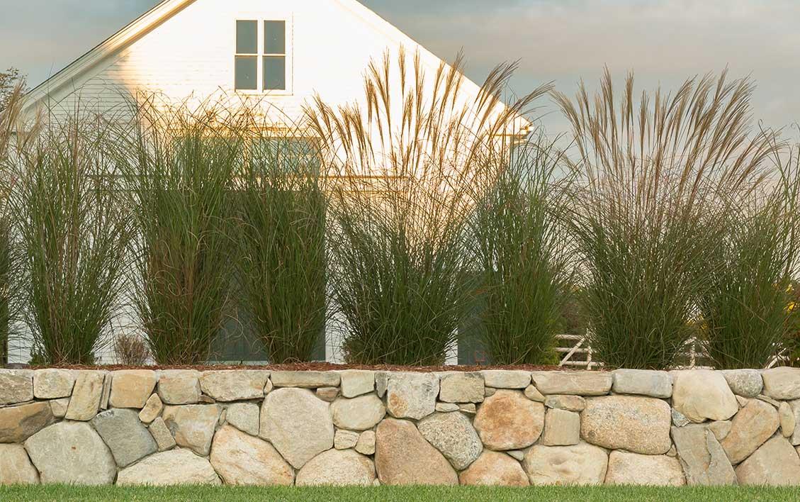 Lloyd Fleischer Landscape Design
